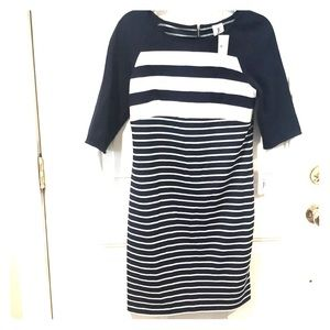 NWT Navy and White Striped Dress